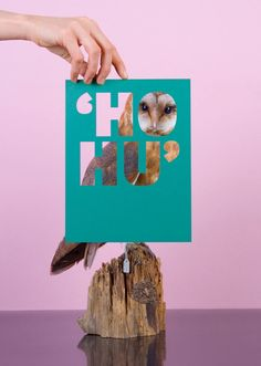 This clever design series presented during Dutch Design Week 2008 combines beautiful fonts and taxidermy birds. Surprisingly, these images brighten your mood with all the vibrant color. Somehow a stuffed dead body isn't so creepy after all. The concept is playing off the fact that the words spell out noises that the birds made while [...]