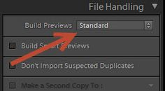 Importing Photos in Lightroom – Build PreviewsExplained!