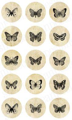 butterfly transfers