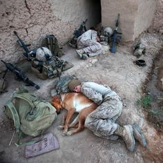 War photographer Gary Ramage has seen too much death. Yet he has returned to the combat zone again and again to tell the stories of those who can't speak for themselves. Military Working Dogs, Military Dogs, Police Dogs, War Dogs, Animals And Pets, Funny Animals, Cute Animals, Tmax Yamaha, I Love Dogs