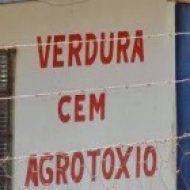 ADSBLEB - agregadordesitesblogslinksebanner - - Erros de Português Parte 2
