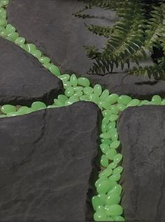 Glow-in-the-dark stones in garden pathway cracks.