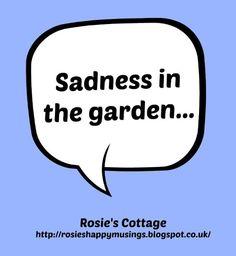 Rosie's Cottage: Sadness In The Garden...