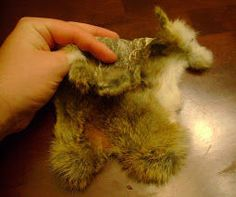 How to Tan Rabbit Hide (with Egg Yolk): I am going to show you how I tan a hide. My way is cheap, easy, and quick. Meat Rabbits, Raising Rabbits, Homestead Survival, Survival Skills, Rabbit Hide, Tanning Hides, How To Tan, Mountain Man, Livestock