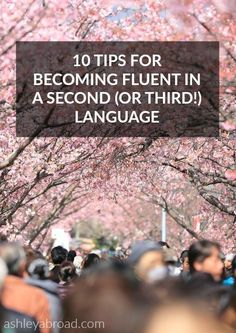 So you want to learn a second language? Good. In my humble opinion, everyone should learn another language. But let me first say- it's not easy. In fact, it's really hard. But, it's also incredibly satisfying, fun and rewarding. And not to mention useful.