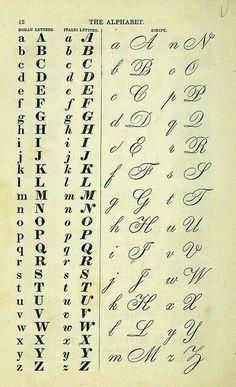 Vintage calligraphy and serif font typeface alphabet chart Alphabet A, Handwriting Alphabet, Handwriting Styles, Hand Lettering Alphabet, Pretty Fonts Alphabet, Cursive Handwriting Practice, Script Alphabet, Handwriting Worksheets, Copperplate Calligraphy