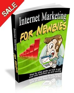 Internet Marketing For Newbies EBOOK PDF FREE SHIPPING business guide traffic