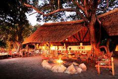Zambia Safari Experience in South Luangwa Parks, Safari, River Lodge, Bar Interior, Beach Bars, African, Cabin, Island, House Styles