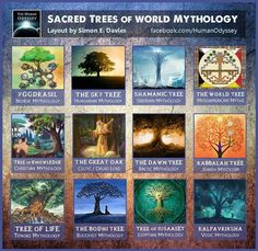 Sacred trees of mythology