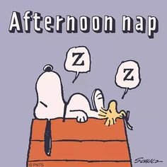 Afternoon 💤