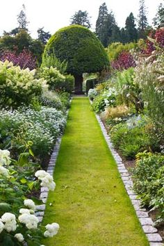 Beautiful garden borders