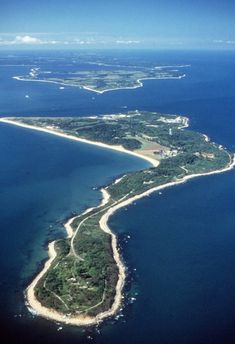 18 best plum island images in 2019 plum island lyme disease rh pinterest com