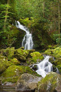 Mouse Creek Falls, Big Creek Area of the Great Smoky Mountain National Park - North Carolina