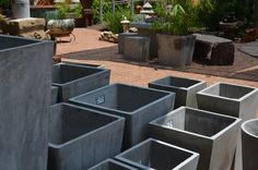 Interested in creating a Water Garden? We carry concrete planters in all shapes and sizes which are perfect for highlighting your water plants.    To learn more about water gardening, watch this great instructional video from GardenSMART:  www.gardensmart.tv/?p=video_tips=2013_show3_1    Eco-Luxury for Home & Garden  www.BigGrassLiving.com
