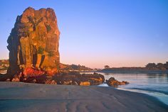 Shag Rock, Christchurch. Christchurch New Zealand, Long White Cloud, What Is Like, Homeland, Beautiful Images, Places To Visit, Castle, Rock, Landscape