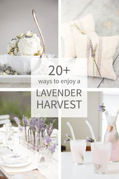 20 ways to use lavender and make the most out of your harvest . because smelling amazing isn't it's only purpose ; Discover it's many purposes today! Fall Home Decor, Autumn Home, Diy Home Decor, Lavender Crafts, Lavender Ideas, Home Crafts, Diy Crafts, Farmhouse Garden, French Farmhouse