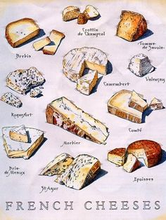 FRENCH CHEESE ~  FROMAGE FRANÇAIS      When you shop, or when you are offered un plateau de fromage in a restaurant, you will be able to recognize which cheese is which!