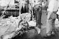 Attacks on shipping: The remains of the engine and propellor of the Japanese suicide aircraft which struck the deck of HMAS AUSTRALIA.