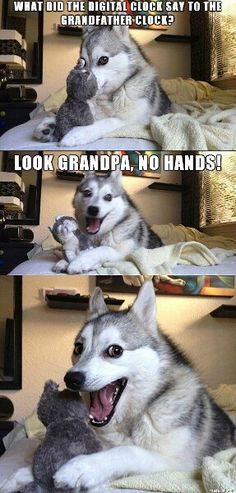 Punny dog strikes again! 3/5