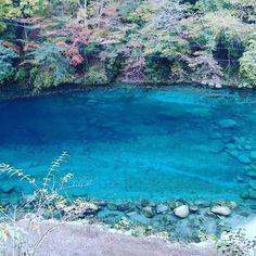 世界の絶景に憧れていらっしゃる方に、都心から日帰りできる秘境スポットをご紹介します。神奈川県にあるユーシン渓谷には、青く美しい渓流があると密かな話題です。ハイキング初心者にもチャレンジしやすいので、ぜひブックマークしてくださいね。