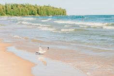 It was a few years ago when I first heard of Door County, Wisconsin. I was instantly intriguedby its well-known charm and beautiful scenery. When I surprised Jared with Green Bay Packers tickets at Lambeau Field, I knew it'd be the perfect opportunity to spend a couple of days in Door County before the game. …