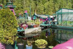 Artists-couple Wayne Adams and Catherine King spent 20 years building a massive, self-sufficient floating island called Freedom Cove. Floating Garden, Floating House, Floating Island, Pool Plants, Natural Architecture, Houseboat Living, Earthship, Boat Tours, Its A Wonderful Life