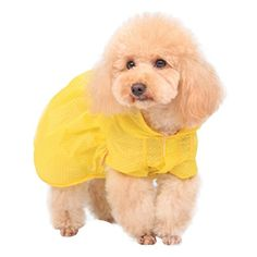 Sunward New Pet Dog Clothes Dog Shirts Summer Thin Sun Protection Pet Air Conditioning Clothes Dog Sunscreen Skirt M B >>> Check out this great product. (This is an affiliate link)