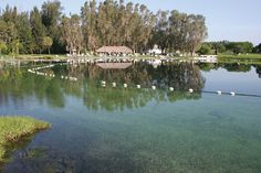 Warm Mineral Springs of North Point, FL.