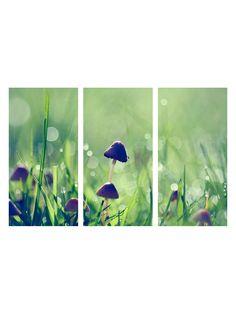 Fairy Garden (Canvas) by Marmont Hill at Gilt #wallart #homedecor #marmonthill