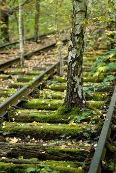 Abandoned tracks in Hans Baluschek Park, Berlin, Germany
