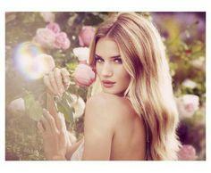 Image via We Heart It #amazing #beautiful #blondhair #blueeyes #model #roses #rosiehuntingtonwhiteley