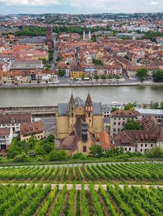 Würzburg Vineyards and Church Bavaria Germany Wandering Chocobo