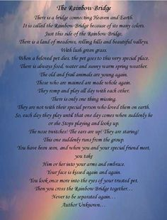 the rainbow bridge poem for dogs we got this poem from the vet when Sammy had died