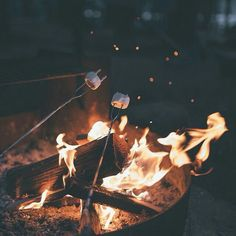 hells yes, camping with the marshies and fire.