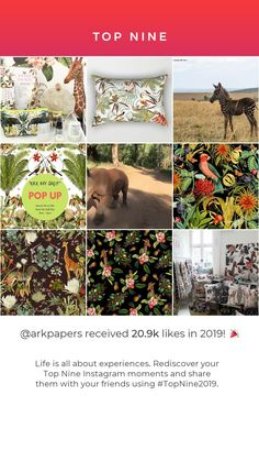 Our top 9 for Top Nine, Cape Town South Africa, Ark, Pop Up, In This Moment, Photo And Video, Studio, Paper, Instagram