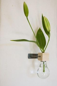 Florero bombilla de pared/ Wall bulb vase #‎recycle‬ design