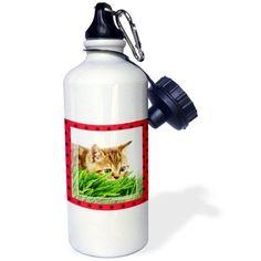 3dRose Cat Hunting Ladybug, Sports Water Bottle, 21oz