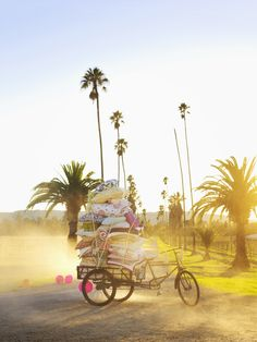 Colorful pillow stacked rickshaw on a dusty palm tree lined dirt road. © Laurie Frankel Photography