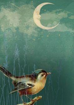 windypoplarsroom: Ella Quaint Moon and Blue Bird Sun Moon Stars, Sun And Stars, Beautiful Moon, Beautiful Birds, Illustration Photo, 3d Art, Paper Moon, Good Night Moon, Moon Magic