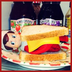 Our funny little elf on the shelf <3 DAY 12: Jingle On Wheat -- Oh, silly Jingle! This morning, we found him in the fridge disguised as a sandwich! ((Look for Jingle -The Elf On Our Shelf on Facebook!))