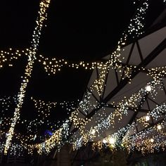 fairy lights @Madelyn Retana From Scratch via instagram