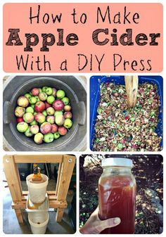 How to Make Apple Cider With a DIY Press