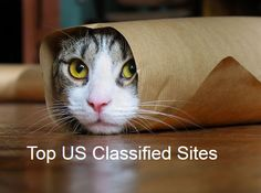Top Free Classified Sites For USA Without Login and Registration