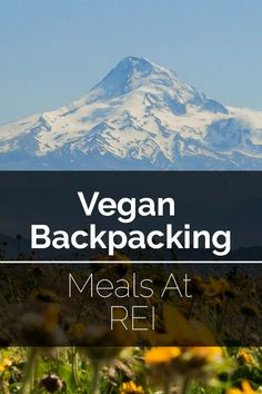 Are you looking for vegan backpacking meals? REI carries a large number of options. Here is a list of their vegan meals to help you plan your next backpacking trip. #vegan #backpacking #rei #bearplate