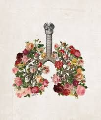 Image result for lungs, tree, tattoo