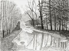 'Woldgate After the Rain' (2013), one of David Hockney's new charcoal drawings of a Yorkshire spring
