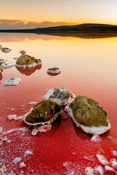 Koyashskoye Salt Lake in Crimea is so pink it looks like another planet!