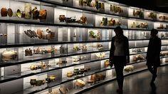 Neues Archäologie-Museum in Chemnitz vor der Eröffnung - DNN-Online