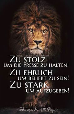 Too proud to hold the fish suits me! Lion Quotes, German Quotes, Feeling Happy, True Words, Wisdom Quotes, Cool Words, Favorite Quotes, Quotations, Funny Quotes