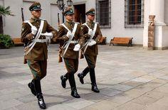 cambio de guardia - Santiago de Chile